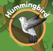 hummingbird camping nature kitu kids games app